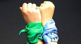 Paso 2019: Se podrá ir a votar con pañuelos verdes o celestes