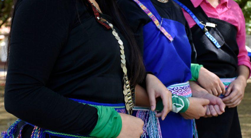 """Neuquén: """"El aborto es una práctica cultural del Pueblo Mapuche"""""""