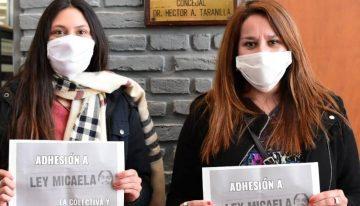 Vicuña Mackenna: Ante cifras alarmantes de violencia, piden la adhesión del municipio a la Ley Micaela